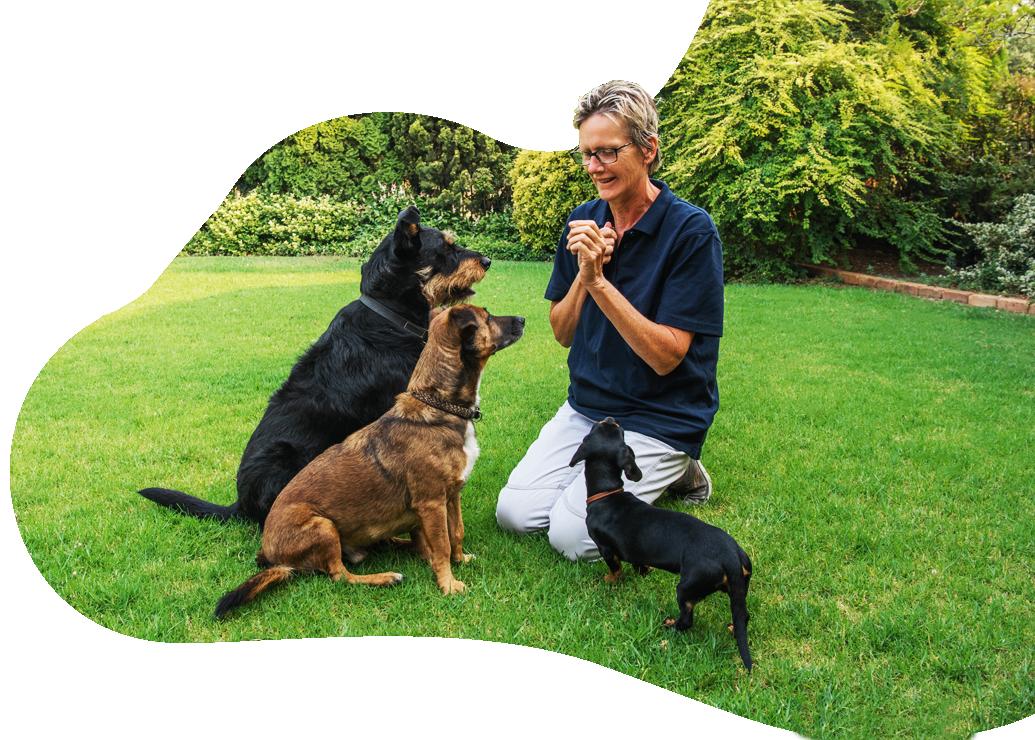 lorraine christie dog trainer
